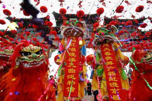 กรมควบคุมโรค รณรงค์ป้องกันไข้หวัดนกช่วงเทศกาลตรุษจีน
