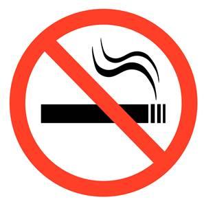"""""""มช"""" พบตัวช่วยเลิกบุหรี่ สมุนไพรหญ้าหมอน้อย"""